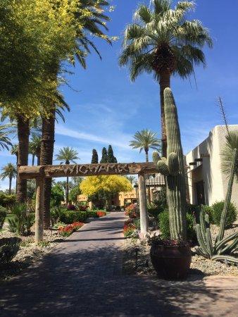 Litchfield Park, AZ: photo2.jpg