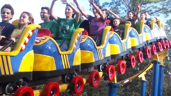 Wild Adventures Theme Park Picture