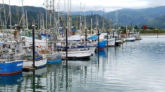 Garibaldi Boat Basin