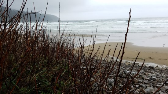 Tillamook, OR: Peace and tranquility
