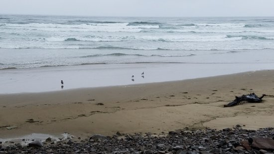 Cape Lookout State Park: Peaceful sounds of waves .. and no other people around