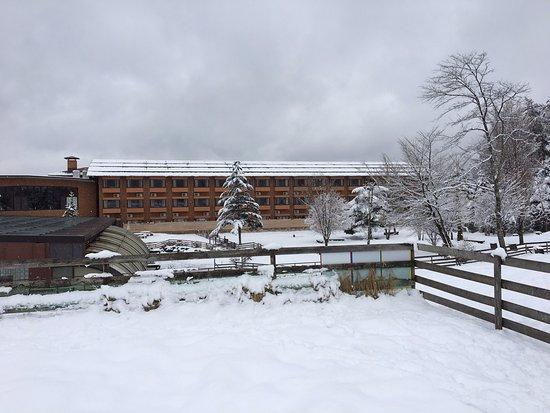 Minamitsuru-gun, Japón: 雪と宿泊棟