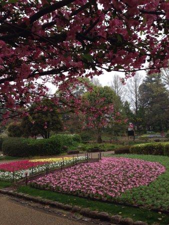 Fukuoka City Zoological Garden: photo0.jpg