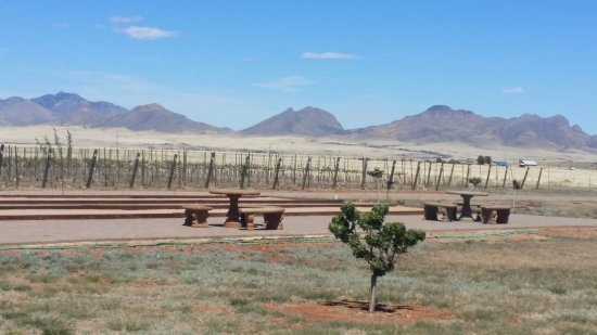 Lightning Ridge Cellars: outdoor table with vines & mountains