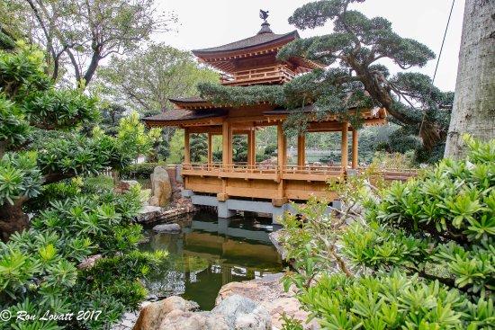 Nan Lian Garden: Bridge Over Koi Pond.