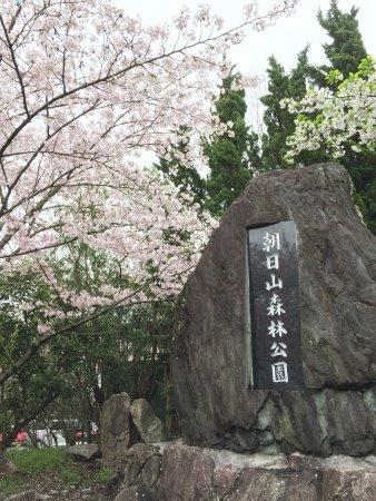 Asahiyama Shinrin Park
