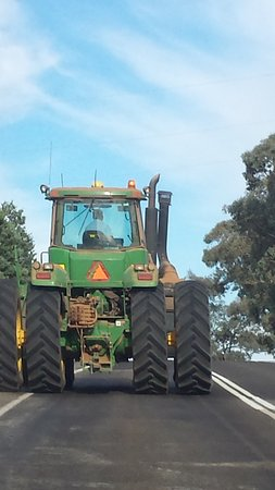 Carcoar, Australia: BEWARE ON THESE ROADS, THEY ARE SLOW