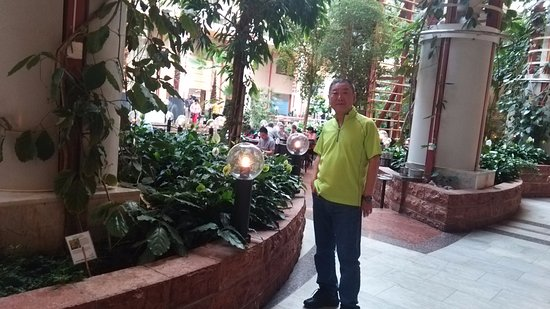 Scandic Infra City: 植物園のようなテラスレストラン