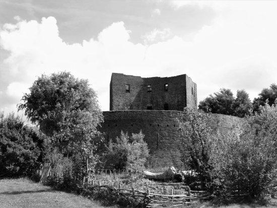 The Ruins Of Teylingen