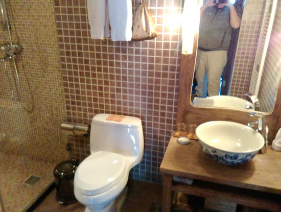 كورت يارد 7: modern western style toilet