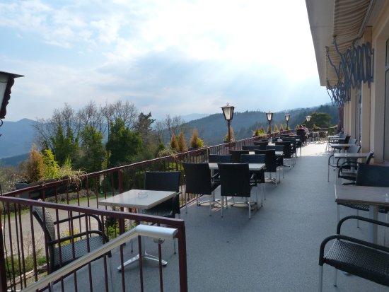 l'Alexain Hotel Restaurant Photo