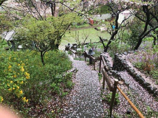 Sanno Hanashimizu Park