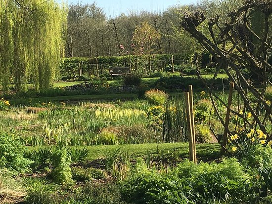 Pembridge, UK: Beautiful gardens around the Watermill Cafe