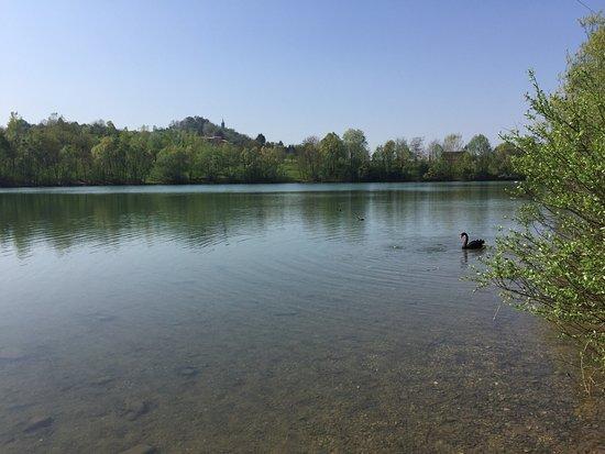 """Parco """"Il Lago"""" di Altavilla Vicentina"""