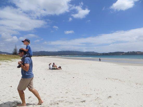 Warkworth, نيوزيلندا: Looking North