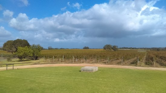 Kangarilla Road Winery: April 2017 visit