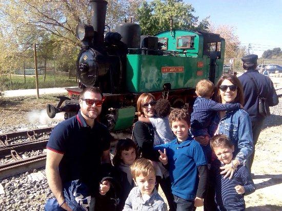 Tren de Arganda del Centro de Iniciativas Ferroviarias Vapor Madrid