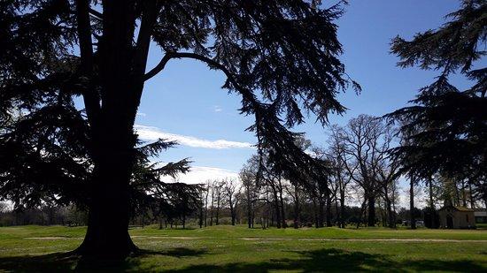 Mignaloux-Beauvoir, Francia: vue sur le golf