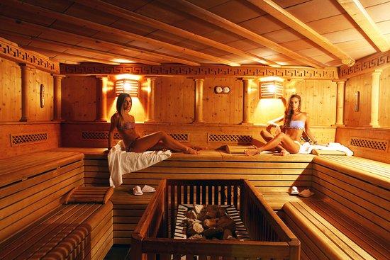 Centro Termale Il Baistrocchi: Sauna