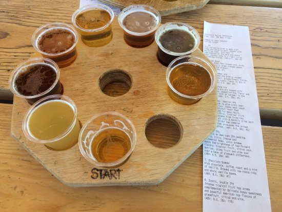 Hangar 24 Craft Brewery: Eight Flights Of Hanger 24 Beer
