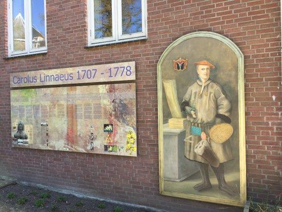 Botanische Tuin Delft : Linnaeus krijgt een belangrijke plaats in de tuin foto van tu