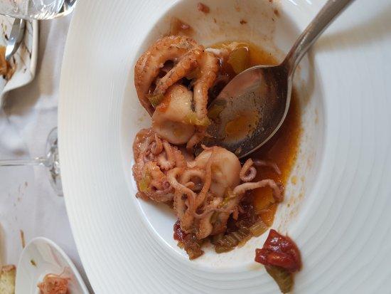 Tarantini al cancello rotto: Giornata culinaria fantastica