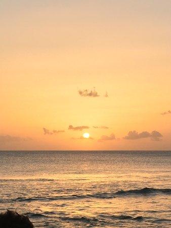 Paynes Bay, Barbados: photo5.jpg