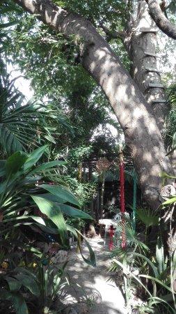 Rancho Tranquilo: IMG_20170402_084114_large.jpg