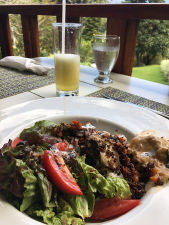 Finca Lerida: Excellent lunch at Cafe La brûlée