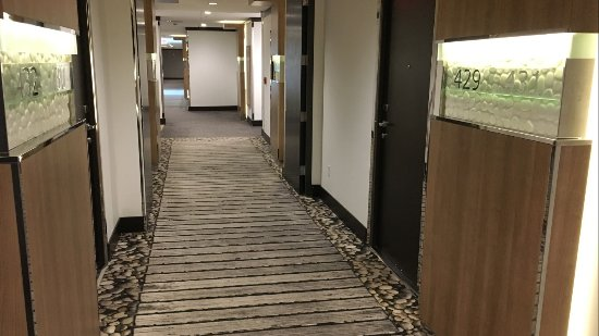 Bimini: Beautiful Hallway outside rooms