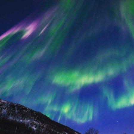 Chasing Lights: IMG_20170409_122156_large.jpg