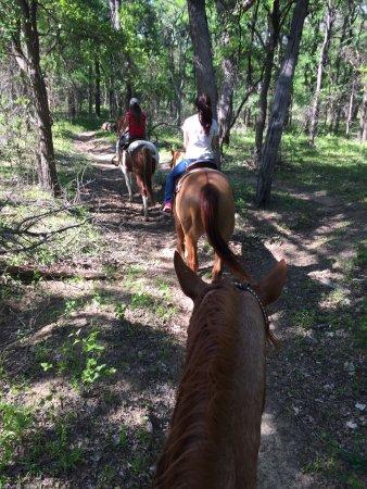 Marshall Creek Ranch : photo0.jpg