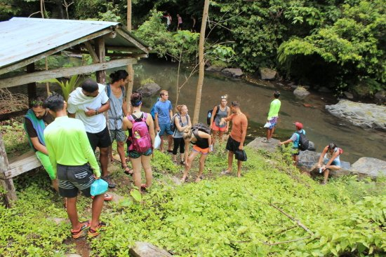 Noosa Bali Tours : 7 waterfall tour with Derar group