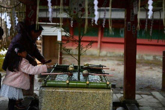 Taiyuimbyo Shrine: photo1.jpg