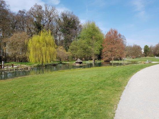 Botanical Gardens Augsburg Picture Of Botanischer Garten Japan