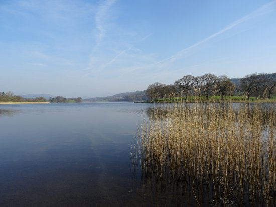 Esthwaite water trout fishery: Looking north up the lake