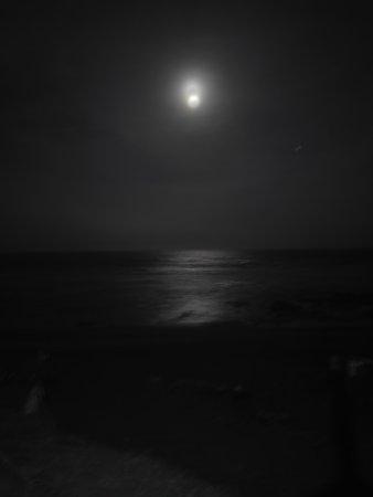 Zinkwazi Beach, South Africa: IMG_20170409_183822_large.jpg