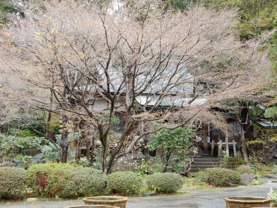 Kakuonji Temple: photo2.jpg