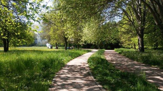 Parco Roncajette