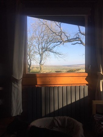 Bliss in the Sticks: View from the living room