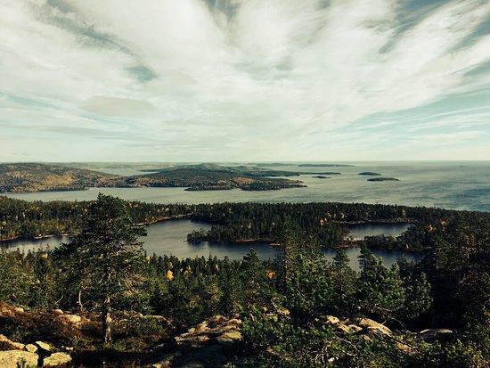 Ornskoldsvik, Suecia: Utsikt från toppen på berget vid Slåtterdalsskrevan i Skuleskogen!