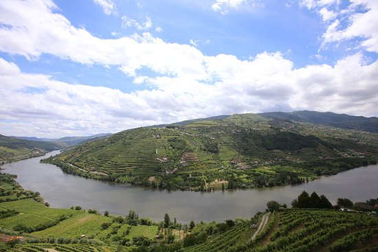 Northern Portugal, Portugal: Douro Valley Mesão Frio