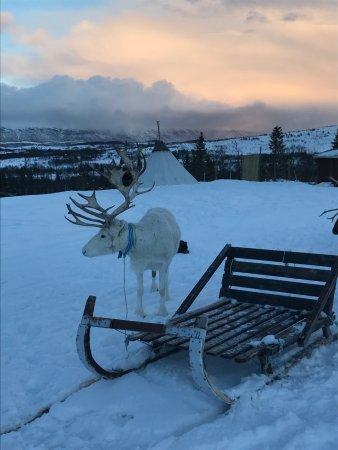 Tromso Lapland: Wonderful overnight trip!