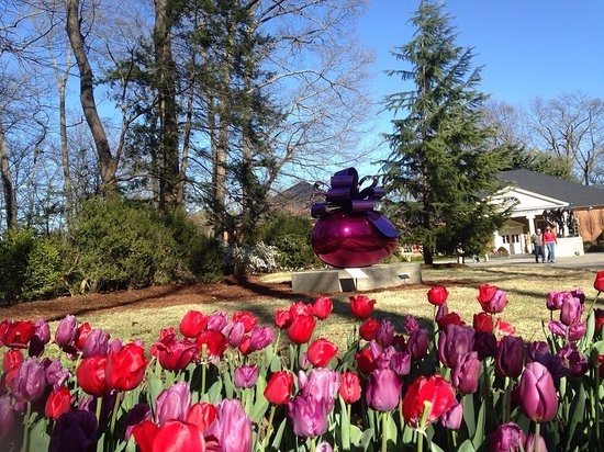 Dixon Gallery & Gardens : Early Spring like blooms