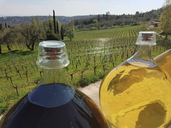 Kultours - Day Tours: Sunlight as a vital ingredient for curing wine!!