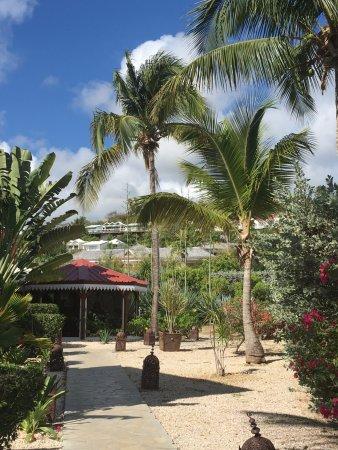 Palm Court Hotel-billede