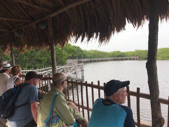 Caye Caulker, Belize: photo1.jpg