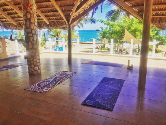 Blossom - Day Lessons: Yoga & Fitness Loft for group classes