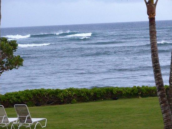 Mokihana: beachfront area