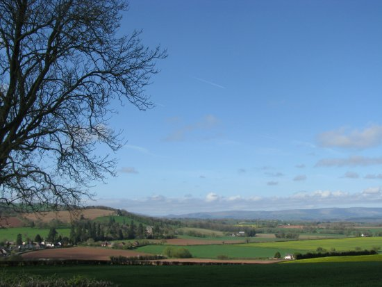 Much Birch, UK: view from hotel